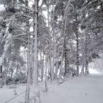 Paysage enneiger au Gite du Fournels
